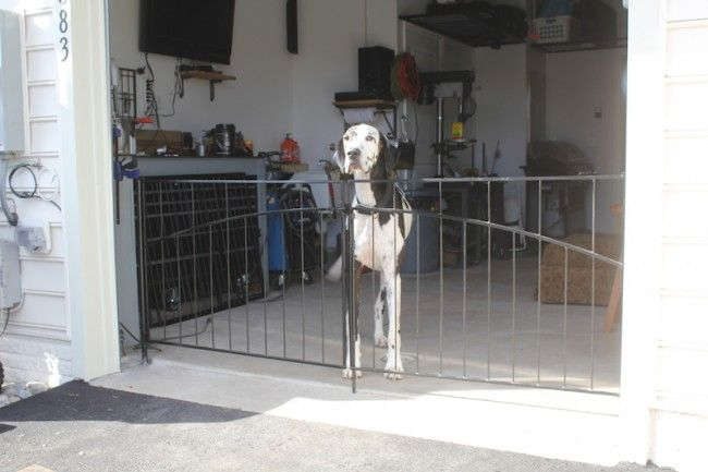 Superieur Interior Pet Gates As A Specialty Fence You